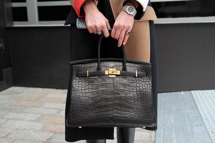 IMG_8515 Hermes croco bag