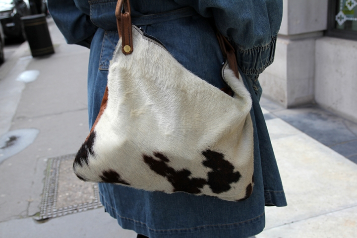IMG_3453 Ponyskin bag