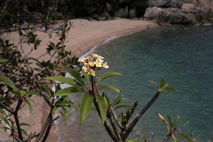 IMG_9428 Why Nam beach s