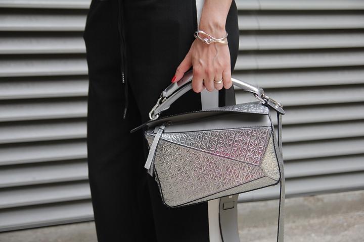IMG_1966s Silver Loewe bag
